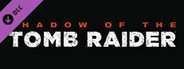 Shadow of the Tomb Raider - White Shadow Band Resource Pack (Steam)