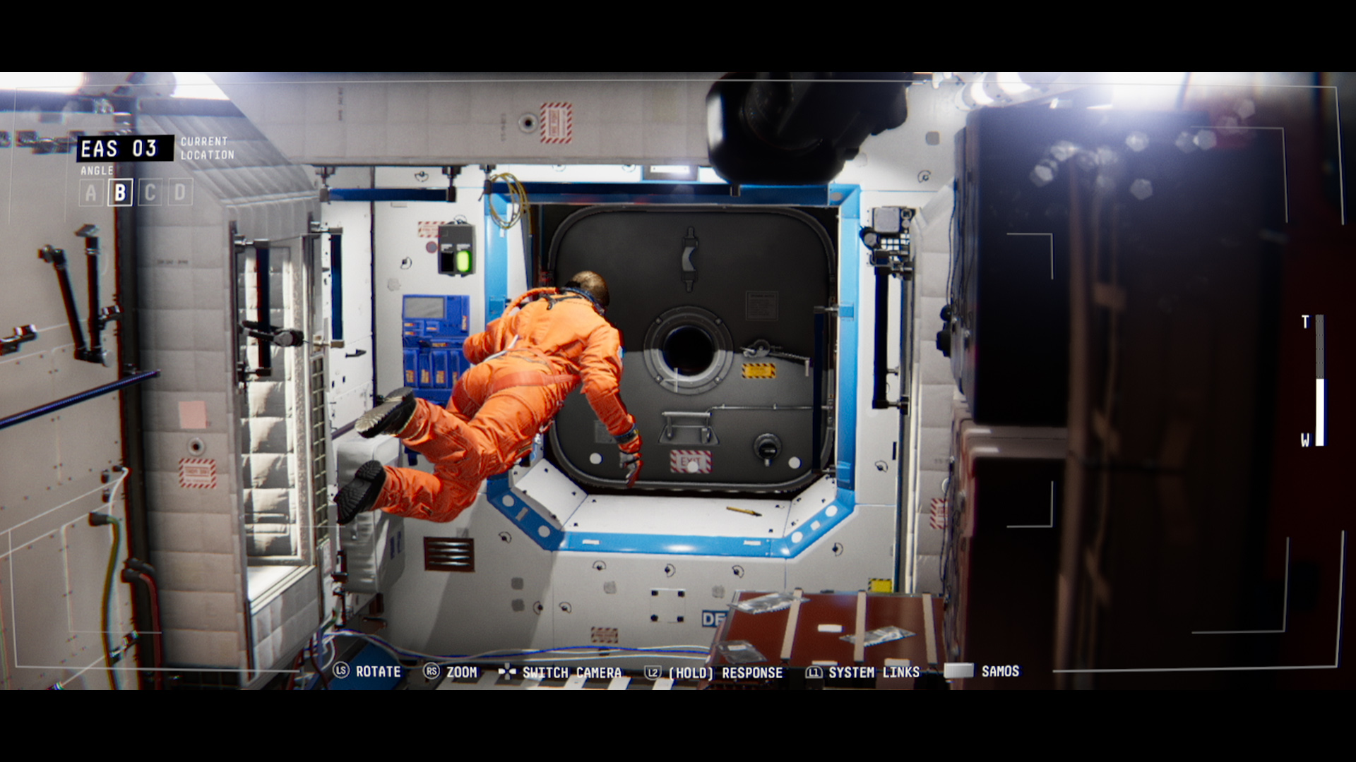 Observation Screenshot 1