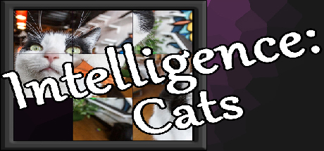 Intelligence: Cats