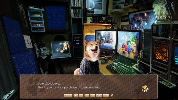 A Summer with the Shiba Inu