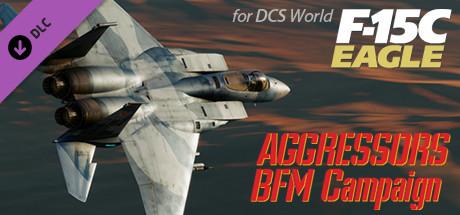 Купить F-15C: Aggressors BFM Campaign (DLC)