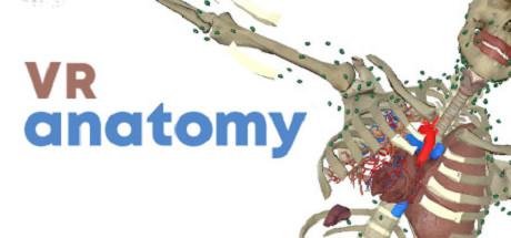 VR Anatomy