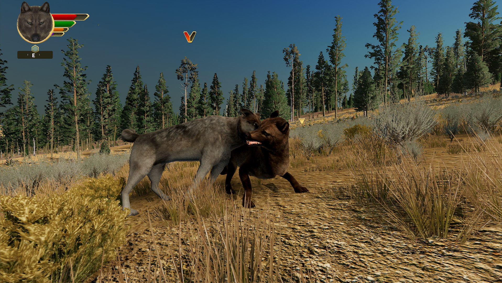 Wolfquest Review