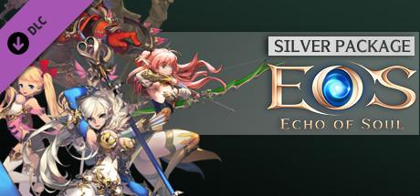 Купить Echo Of Soul Silver Edition (DLC)
