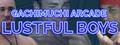 GACHIMUCHI Arcade: Lustful Boys