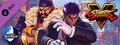 Street Fighter® V - Capcom Pro Tour: 2019 Premier Pass-dlc