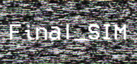 Final_SIM
