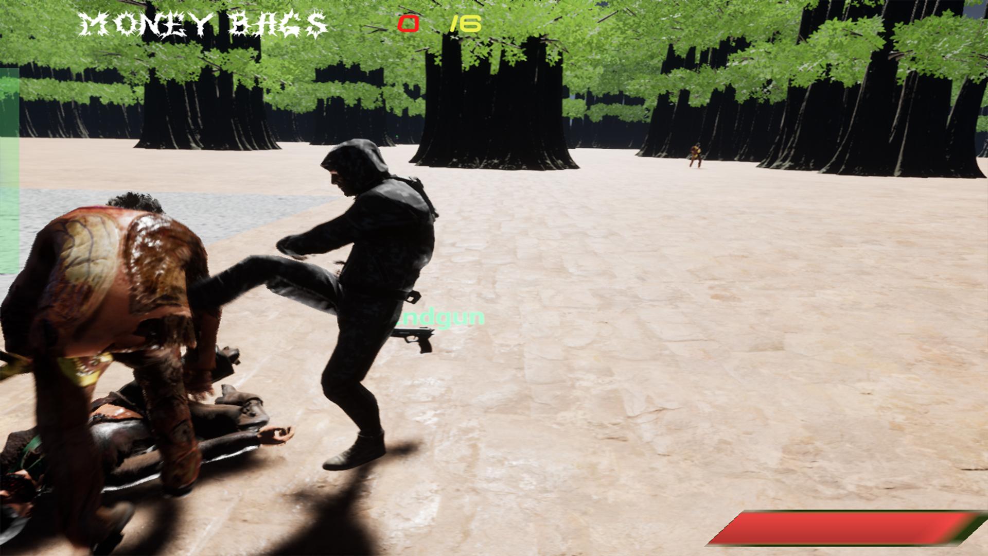 com.steam.998480-screenshot