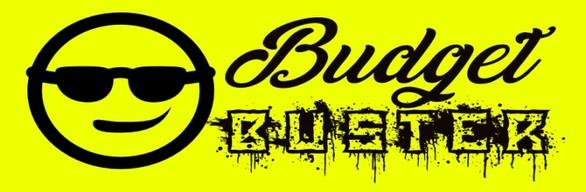 Budget Buster Remodel