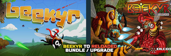Beekyr to Reloaded Upgrade