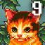 Cat №9