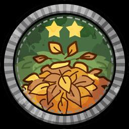 Leaf Downfall