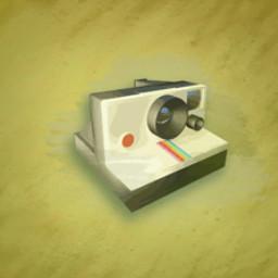 Polaroid?