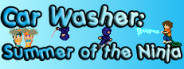 Car Washer: Summer of the Ninja