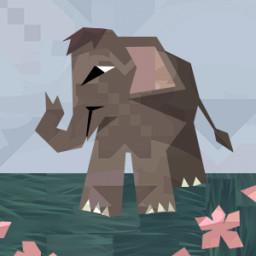 Curious Start - Elephant Calf