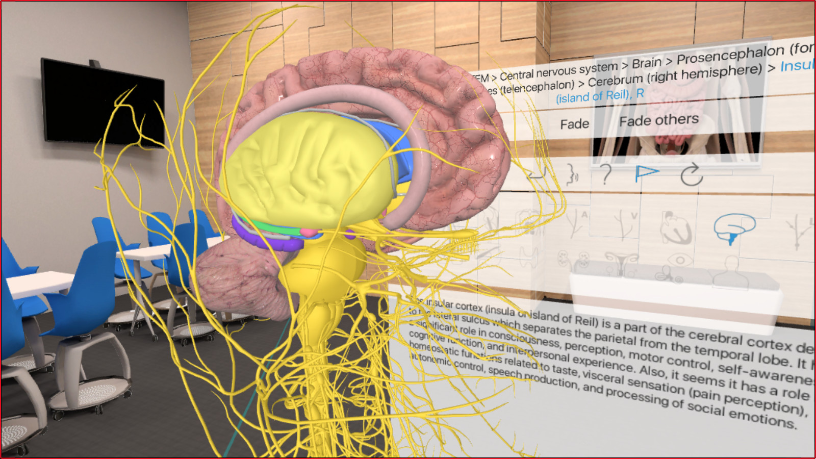 Steam Community :: 3D Organon VR Anatomy :: Game Art