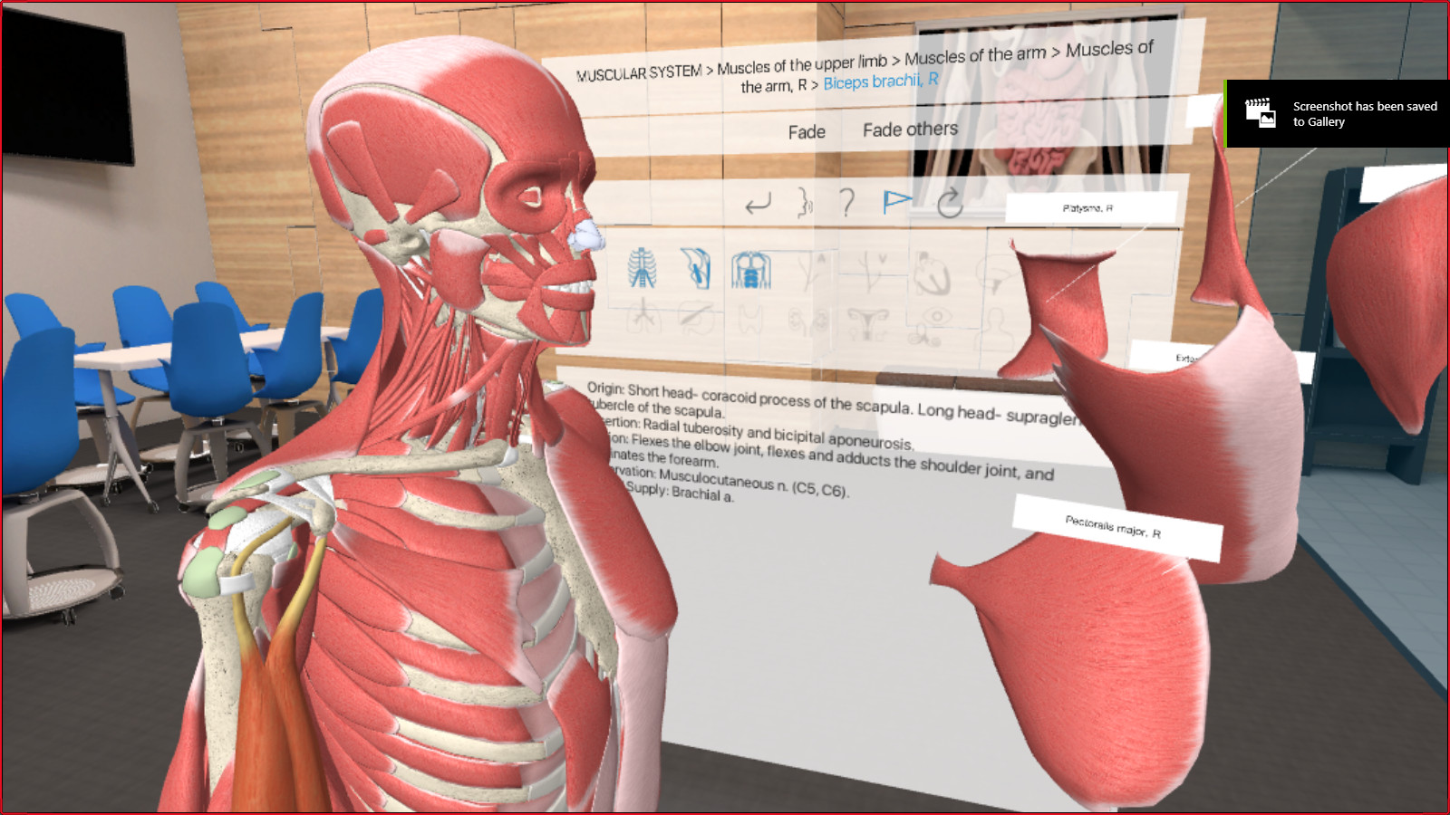 Steam Community 3d Organon Vr Anatomy Game Art