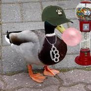 Swag Duck 27