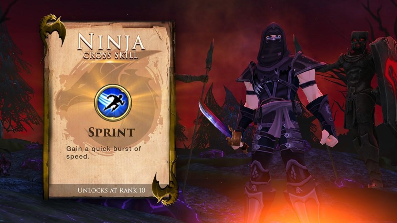 AdventureQuest 3D :: Ninja Class Just released!