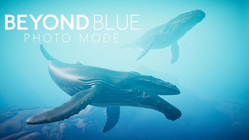 Enter the Beyond Blue Photo Mode Contest