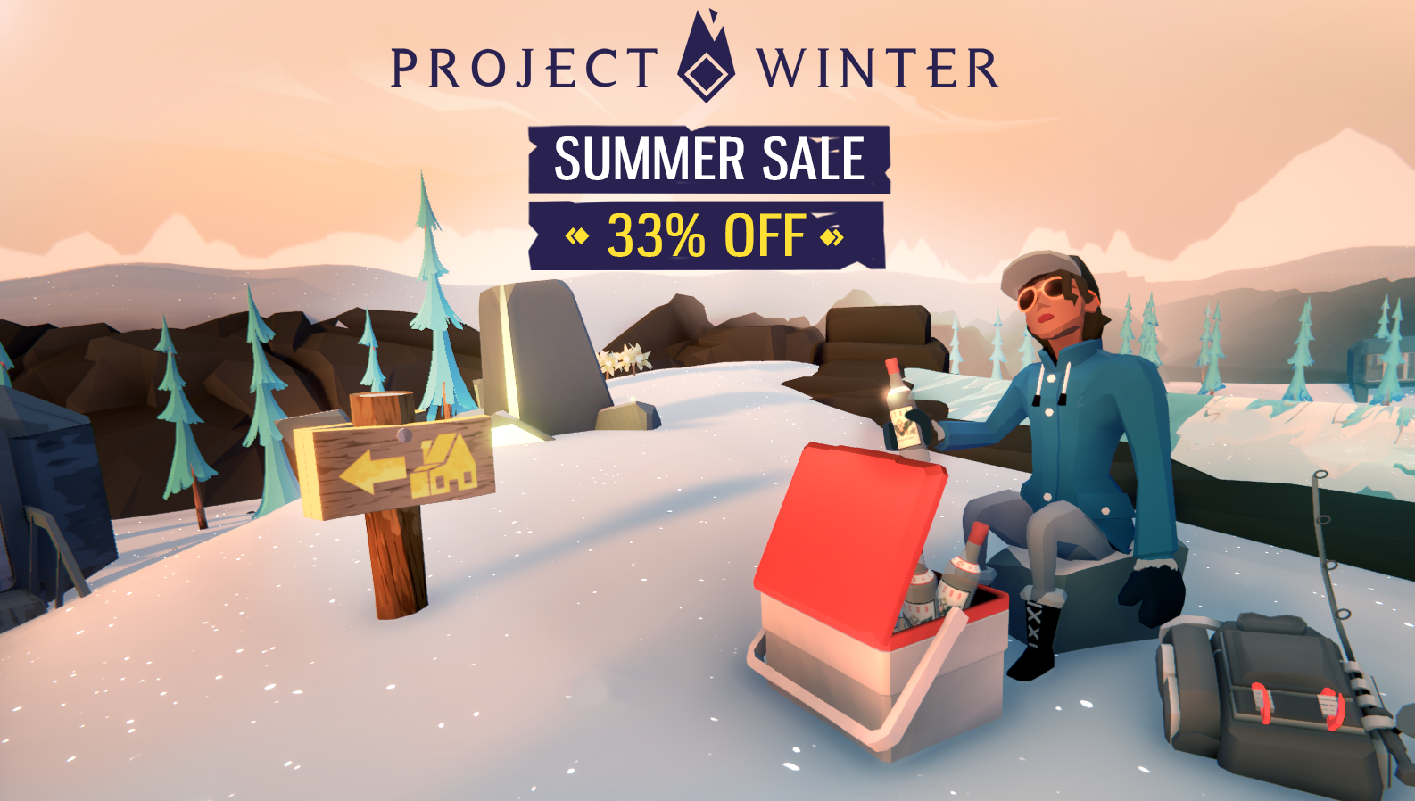 Project Winter Summer Sale