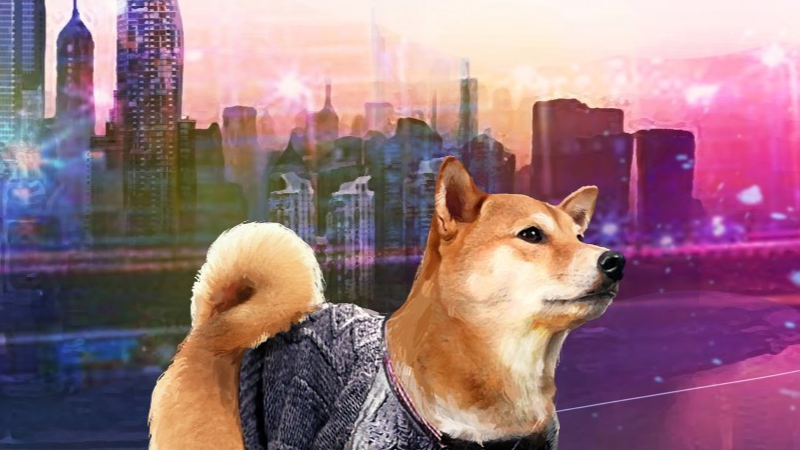 A Summer with Shiba Inu: Review