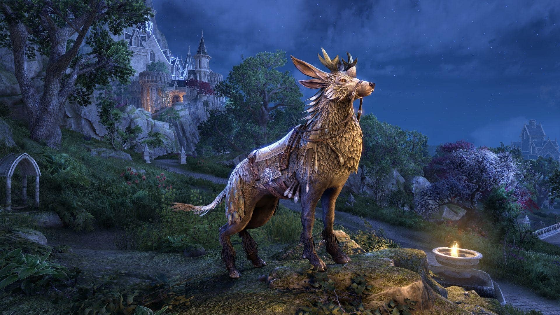 Jan 16 The Elder Scrolls Online heads to Elsweyr, land of cats