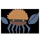 Douglas Crab
