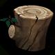 Fir Stump