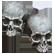 :skulls: