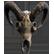 :cowskull: