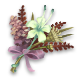 Riverton Hyacinth