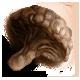 Big juicy mushroom