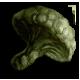 Medium green mushroom