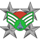 Chief Master Sergeant