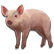 :oink: