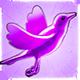 Amethyst Bird
