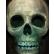 :d_skull: