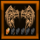 AoF Bronze Badge #1