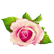 :pflowers: