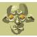 :SSOD_clone: