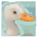 :Duckie: