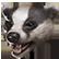 :fcp_badger: