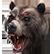 :fcp_bear: