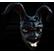 :blackrabbit: