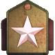 Brigadier General