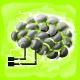 Nanoscale Thoughts