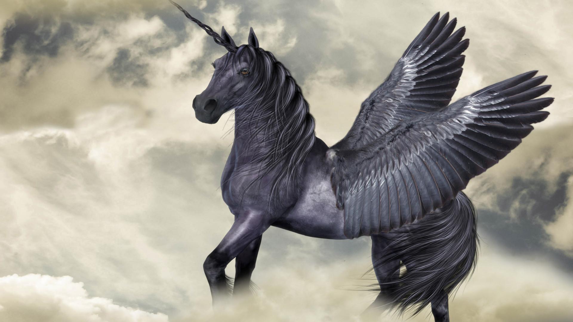 Blackjack Pegasus Porn - Card 1 of 5Artwork · Pegasus in the Clouds