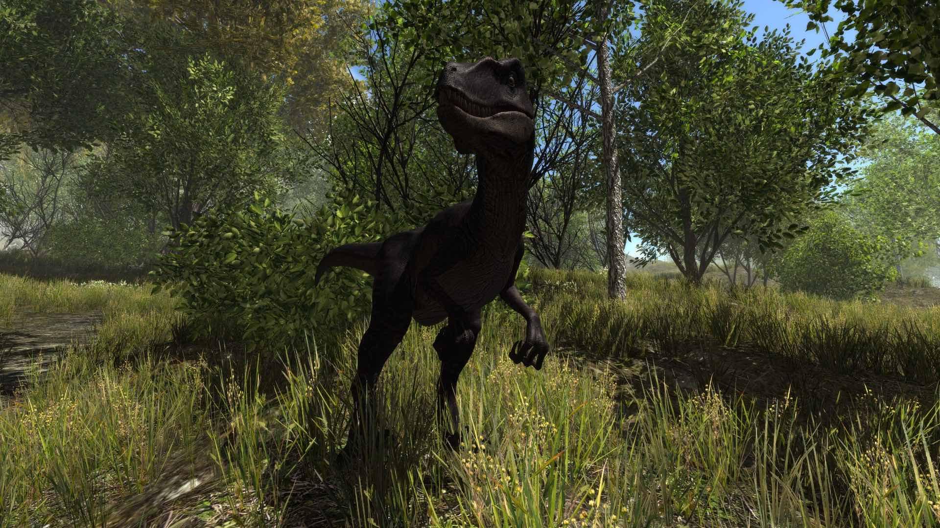 Steam Card Exchange Showcase Dinosaur Forest