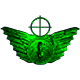 Novice wings badge